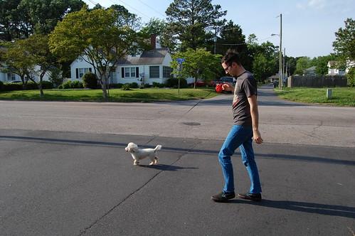 Walking the Dog (6)(May 10 2013)