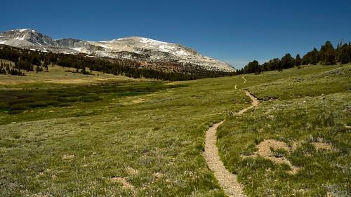 Trail to Mono Pass, Yosemite, California. Courtesy of Tom Hilton