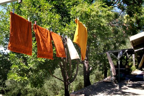 Metta Forest Monastery