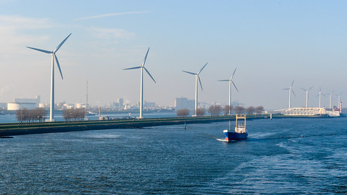 Wind turbines of the port of Rotterdam