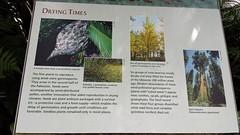 U.S. National Botanic Garden
