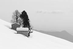 Quiet & Snow