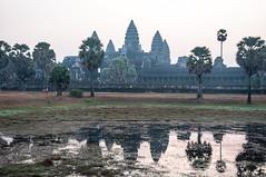 Morning at Angkor Wat.