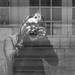 a self-reflection of a self-reflection of a... by pukilin