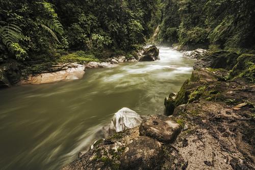 ecuador rio bombuscaro torrente river dark moody water flow acqua