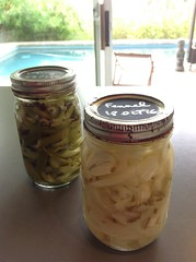 Fennel & celery pickles