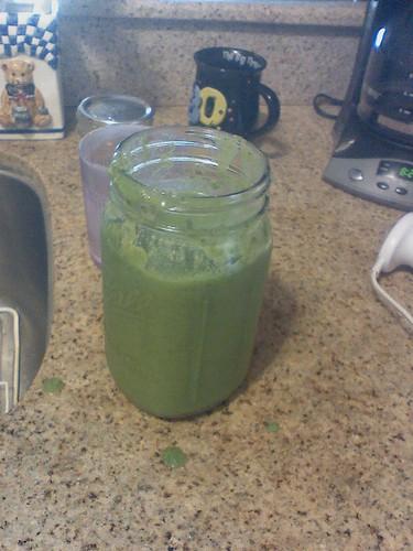 Inelegent Kale Smoothie! by Petunia21