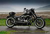 ricks softail slim