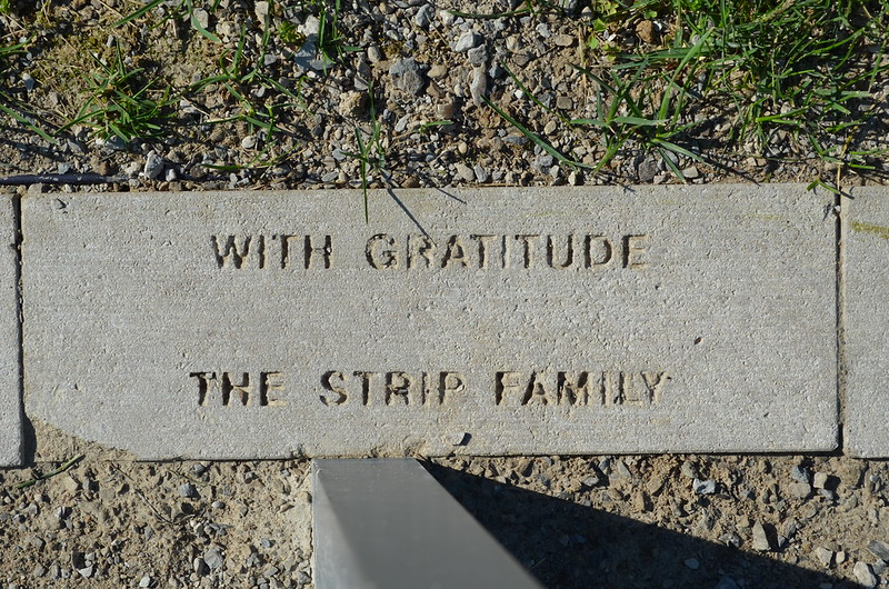 With Gratitude - Strip Family