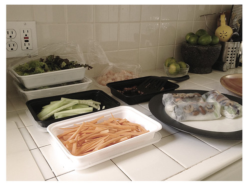 Assembly Line for Vietnamese Spring Rolls