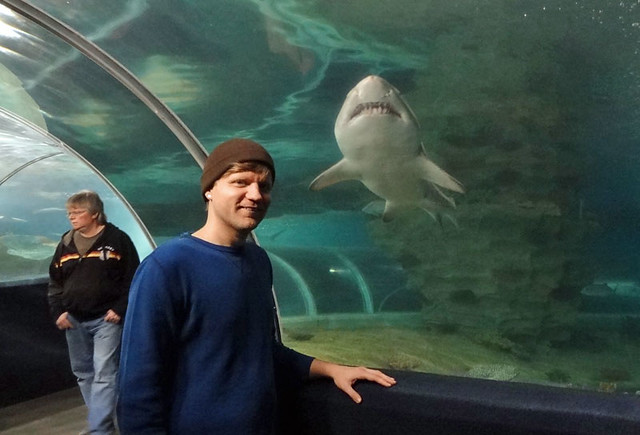 stuff to do in cleveland - aquarium-shark