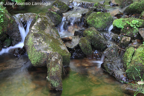 Parque Natural de Gorbeia #DePaseoConLarri #Photography 3