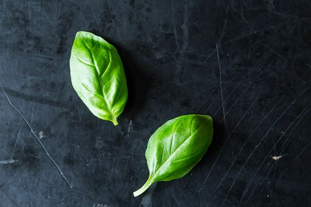 Down & Dirty with Basil, from Food52