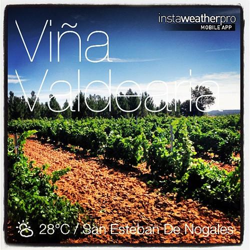 Viña #valdearia #weather #instaweather #instaweatherpro  #sky #outdoors #nature #world #sanestebandenogales #españa #day #summer #es