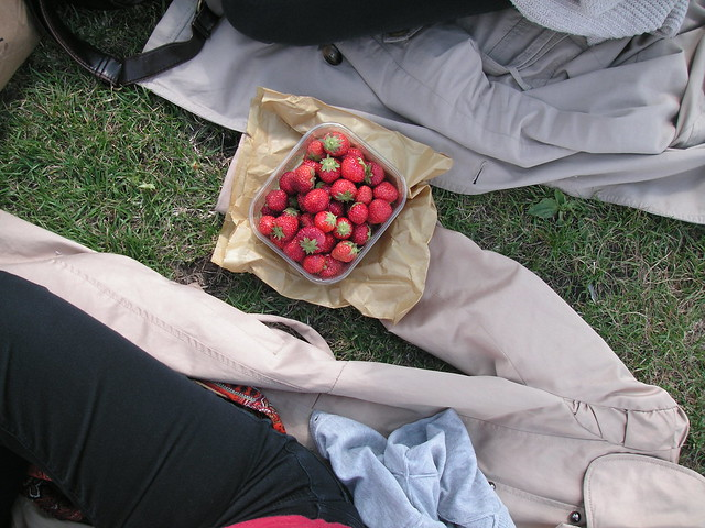 primrose hill with strawberries, london with luara