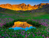 Colorado Wildflowers Surround Alpine Pond