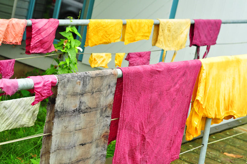 Stoff Wolle Farbe färben Pflanzenfarben Naturfarben Färbepflanzen