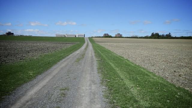Walking the Farm 6