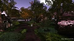 Fantasy Faire 2015 -- Tangleshimmer Grove