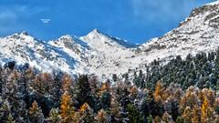 Siviez - Valais - Suisse