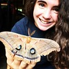 @rayray0922 and a huge #polyphemus moth we found in her Pa-pa's garage