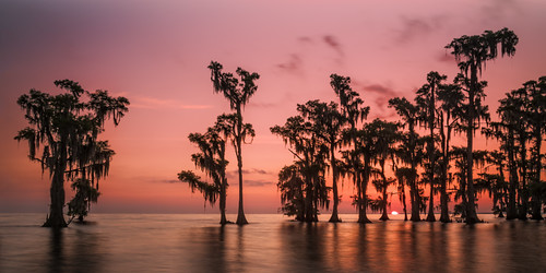ocean morning travel blue trees light sunset red sea summer sky orange cloud sun sunlight lake color tree nature water colors beautiful beauty sunshine weather yellow skyline clouds sunrise season landscape dawn golden us louisiana colorful heaven view unitedstates natural bright outdoor background horizon scenic meadow dramatic sunny scene swamp environment cypress cloudscape laplace maurepas