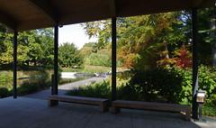 Plenty of benches  at the New York Botanical Gardens....HBM