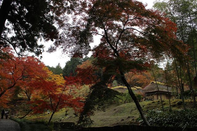 1491_西山荘(せいざんそう), Canon EOS KISS X5, Canon EF-S 18-55mm f/3.5-5.6 IS II