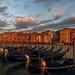 Gondolas on the Grand Canal at sunrise, Venice, Italy by diana_robinson
