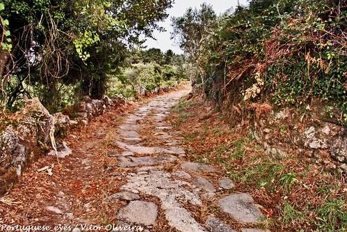 Via Romana da Roda - Portugal