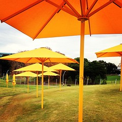 Poolside #umbrella #sun #yellow #princealbertparkpool #poolside...