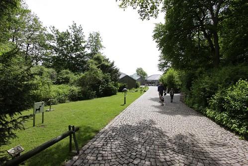 """Auf dem Weg Richtung Wikinger Museum Haithabu. Links befindet sich die """"Hundewiese"""" (im Museum bezeichnet man das als """"Hundeparkplatz""""), da in dem Museum keine Hunde mit rein dürfen. 02 Haithabu WMH 02-06-2013"""