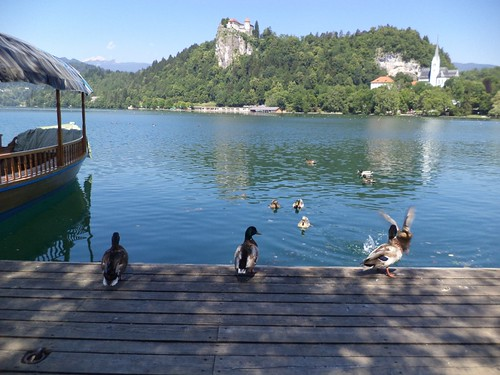From Budapest to Lake Bled, Slovenia