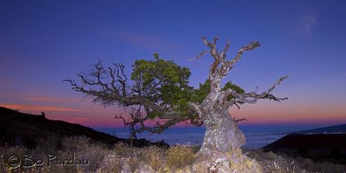 sunset hawaii maunakea