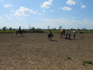 Group Horse Lessons 10Jul13 (13)