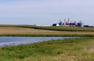 Iowa farm with buffered wetland
