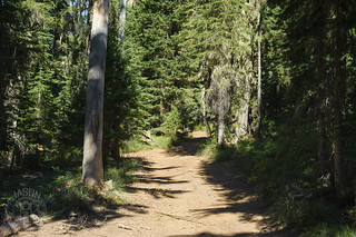 Bullion Pass ATV trailhead