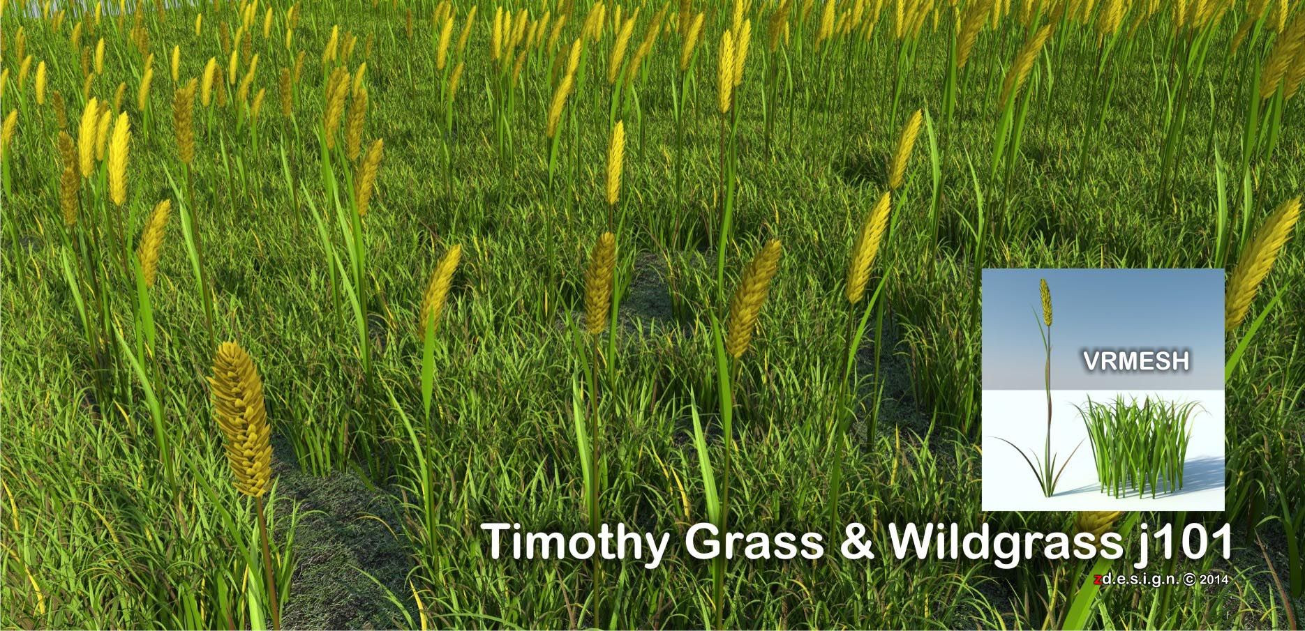 http://www.4shared.com/rar/EOFVQE6Kce/zdesign_Timothy_grass_wild_gra.html