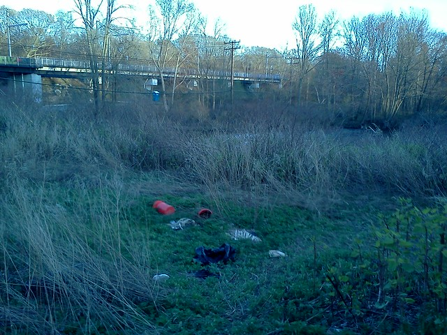 Ribcage skeletons, rope, 5-gallon buckets -- nice place for a picnic off Wellington Ave, Cranston RI