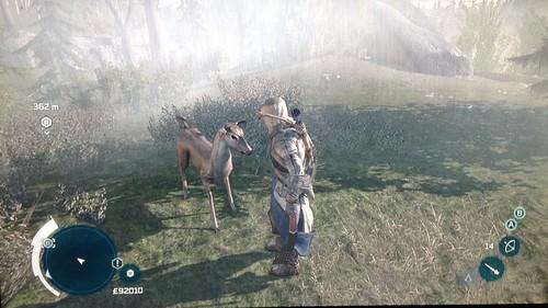 Assasin's Creed 3 - Bambi