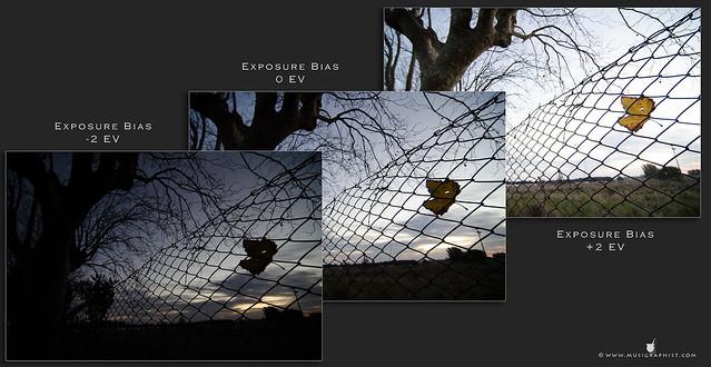 3-fotos-otoño