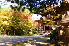 Photo:Saimyo-ji, Precincts -1 (November 2016) By Tetsuhiro Terada