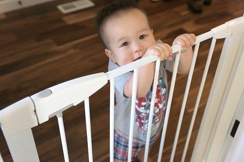 Munchkin gate with child holding onto gate