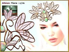 Bliensen - Albion - Tiara