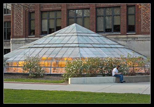 Greenhouse light - Edward Henry Kraus Building