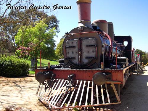 100_365+1 Parque del Tren by Fodi_Danae