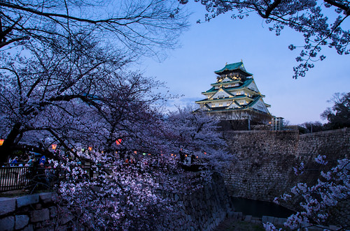 Tower of Osaka Castle and Sakura by hyossie