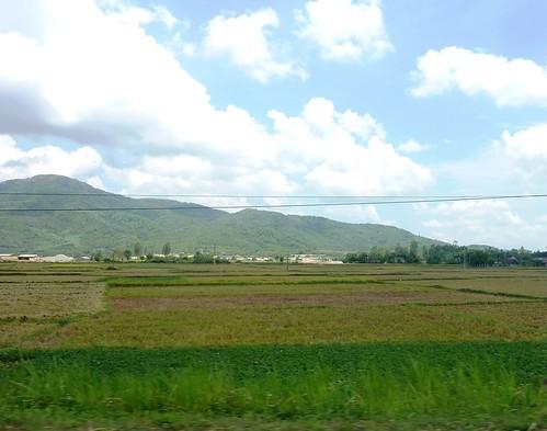 V-Route Pleiku-Quy Nhon (42)