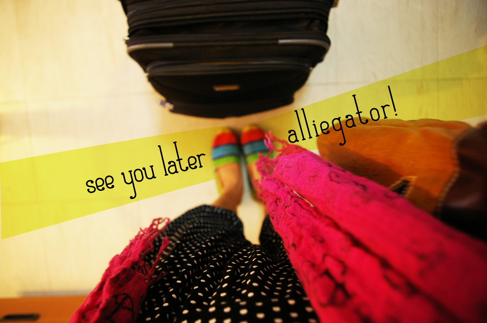 later alliegator