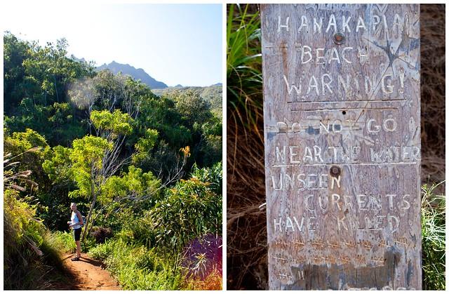 kauai trail 3